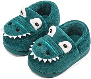 Girls Boys Home Slippers Warm Dinosaur House Slippers for Toddler Cute House Shoes Fur Lined Winter Indoor Shoes