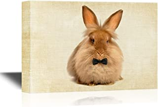 wall26 Canvas Wall Art - A Lying Chocolate Colored Lionhead Bunny Rabbit - Gallery Wrap Modern Home Decor | Ready to Hang - 12x18 inches