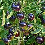 50pcs Rose 'Azul' semillas de tomate Nueva variedad púrpura de tomate Vegetable Seeds Inicio Jardín Bonsai planta de tomate de bricolaje