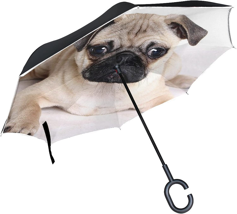 Animal Dog Pug Yellow White Black Mix Fluffy Puppy Ingreened Umbrella Large Double Layer Outdoor Rain Sun Car Reversible Umbrella