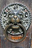 Decorative Brass Lion Door Knocker Journal: 150 Page Lined Notebook/Diary