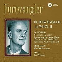 Furtwangler in Wien 2 by Wilhelm Furtwangler (2014-11-12)