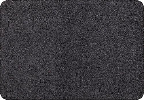 Efia Salonloewe Mini Matte anthrazit waschbare kleine Fußmatte, Größe:25 x 39 cm