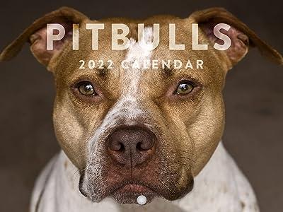 pit bull 2022 calendar