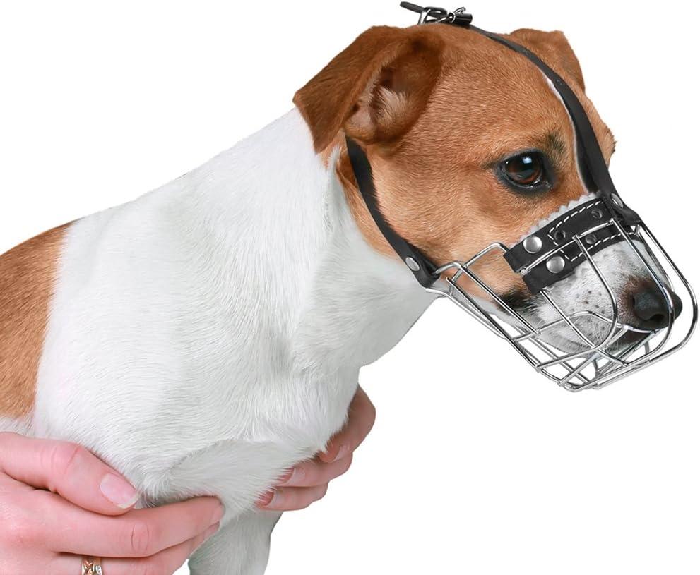 verstellbar Metall Leder Jack Russell Terrier Gr/ö/ße S BronzeDog Drahtkorb f/ür Hunde