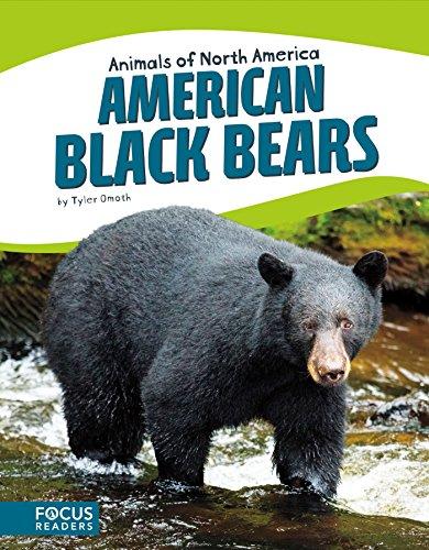 American Black Bears (Animals of North America (Set of 8))