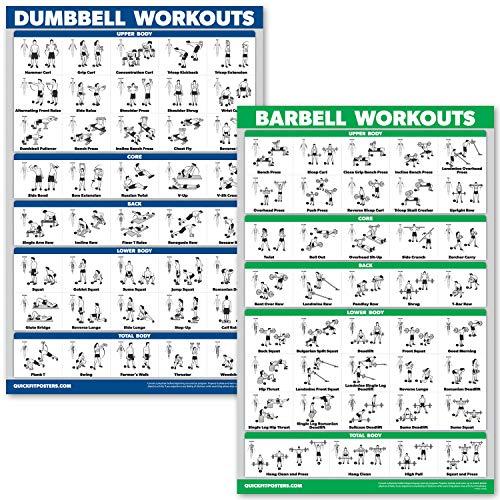 QuickFit Kurzhanteltraining und Langhantel-Übungsposter-Set – laminiertes 2-Diagramm-Set – Kurzhantel-Übungen & Langhantel-Workouts, LAMINATED, 18