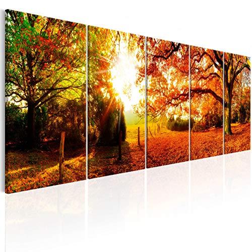 murando - Cuadro de Cristal acrílico Bosque 200x80 cm Impresión de 5 Piezas Pintura sobre Vidrio Imagen Gráfica Decoracion de Pared Abstracto - Bosque Paisaje Naturaleza Arbol c-B-0287-k-m