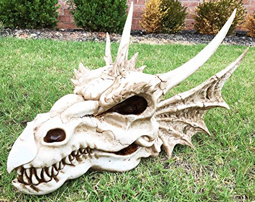 "Ebros Gift Large 18"" Long Erathia Elder Dragon Skull Fossil Statue Figurine Might and Magic for Medieval Dragon Era Fans Game of Thrones Lovers Dungeons and Dragons Fantasy Decor"