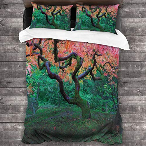 fudin Duvet cover bedding Set,Aged Red Leaf Maple Moss Garden Scenery In Autumn Grass Relaxation In Nature,3 Piece Set bedding with 2 pillowcases,Super King(220 * 260cm)
