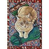 Jestang - Kit de pintura de diamante 5D con números, para adultos, principiantes, para decoración, diseño de gato, 30 x 40 cm