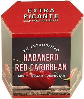 Resetea | Kit autocultivo | Habanero red caribbean