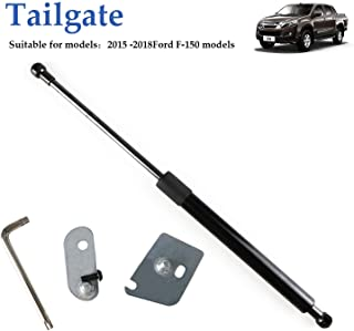 Truck Tailgate Assist Shock Kit for 2015-2018 Ford F150 Pickup DZ43204