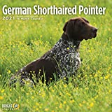 2021 German Shorthaired Pointe...
