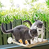 OTDEST Cat Resting Seat Perch Window Hammock Cats Kitty Safety Bed with Durable 6 Big Heavy Duty Suction Cups Cat Sunny seat Bed Holds Up to 30lbs