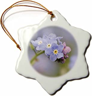 forget me not garden ornaments