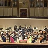 Concerto grosso No.2 3mov.