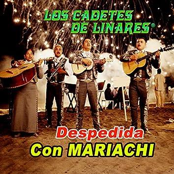 Despedida Con Mariachi Y Mas