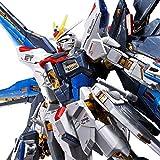 Bandai spirits 1/144 RG ZGMF-X20A Strike Freedom Gundam Titanium Finish
