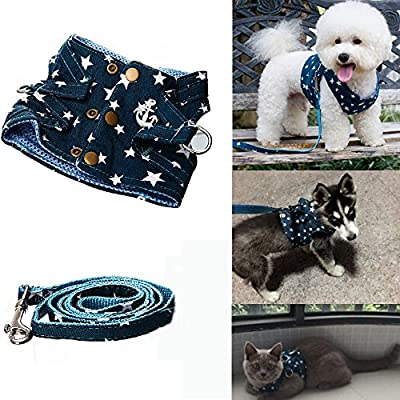 Bro'Bear Pet Stars Vest Mesh Harness and Leash Set Blue for Cats & Small Dogs Blue