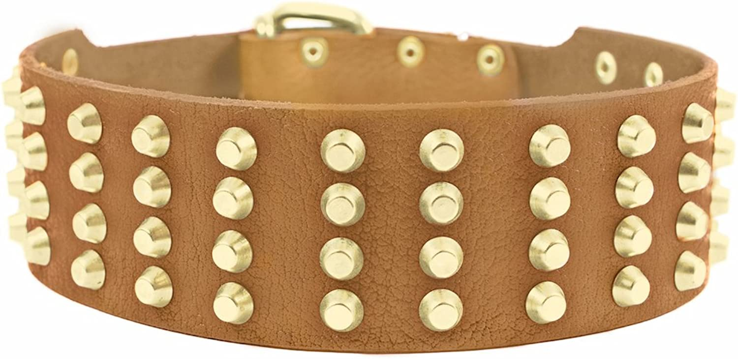 Dean and Tyler  4 ROW STUDS  Dog Collar With Solid Brass Hardware And Brass Buckle  Tan  Size 81cm by 6cm Width  Fits Neck Size 76cmes to 86cmes.