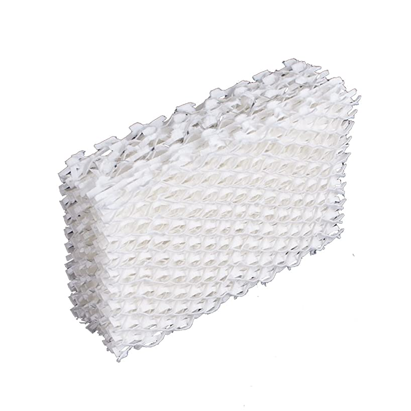 BestAir D13 Extended Life Humidifier Replacement Paper Wick Humidifier Filter, For Duracraft, Robitussin, ReliOn & Honeywell Models, 5.9