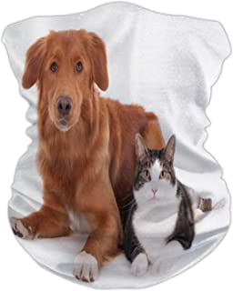 Cat and Dog,Seamless Face anas for Dust, Outdoors, Festivals, Sports Side by Side Dog