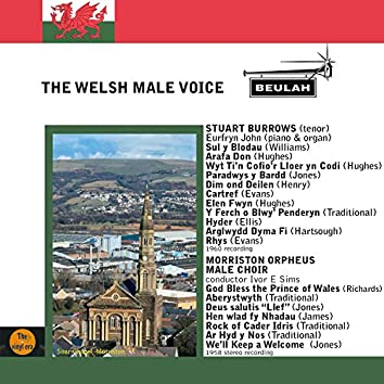 The Welsh Male Voice