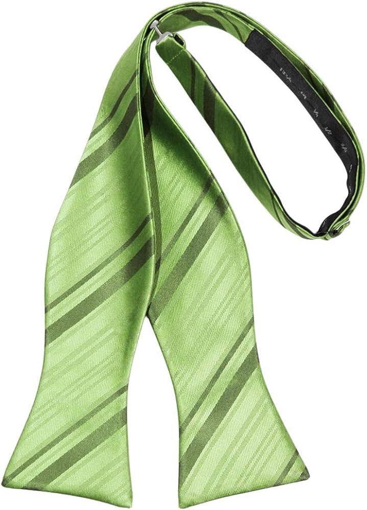 Cardi Striped Satin Self Tie Bow Tie