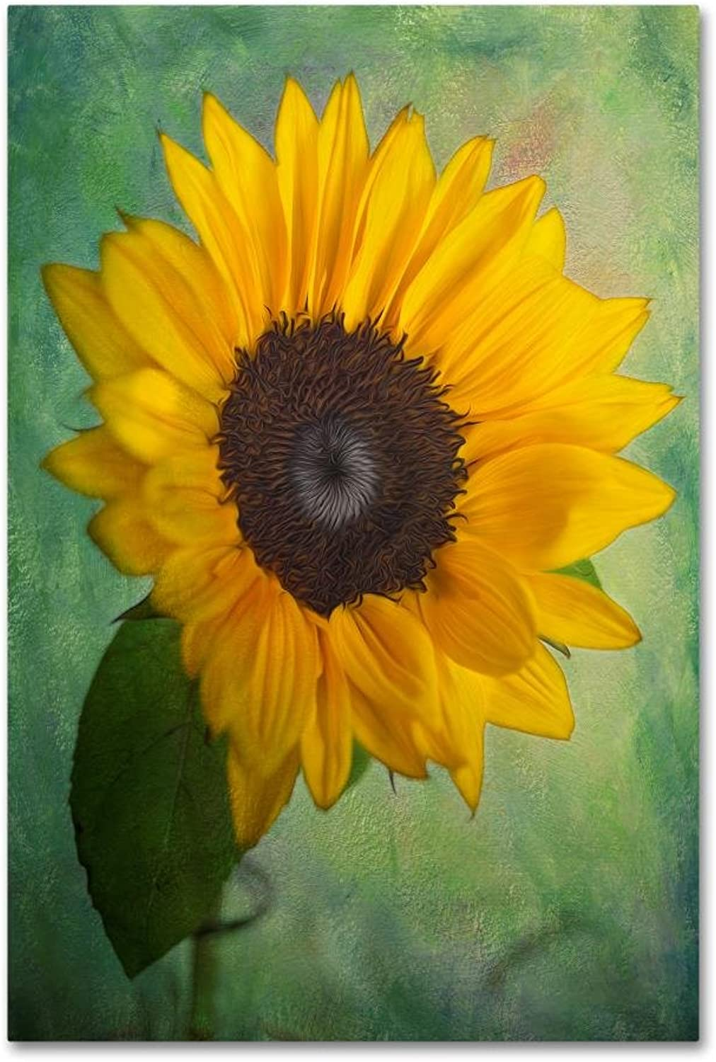Yellow Sunflower by Bob Rouse, 12x19Inch Canvas Wall Art
