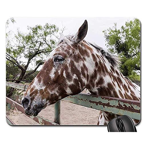 Gaming Mousepad - Mausunterlage - Pferdehürden-Zaun Ranch Animal Livestock