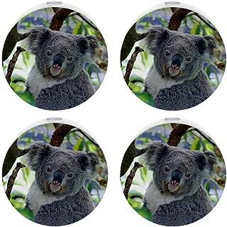 Small Night Light with Cute Koala Australia Animal Night Light Plug in Wall with Dusk-to-Dawn Sensor Pack of 4