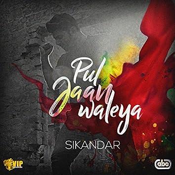 Pul Jaan Waleya