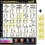 Mancuernas ejercicio entrenamiento Banner Póster grande 51x 73cm tren Endurance, tono, construir fuerza & Músculo Gimnasio en casa gráfico, Original