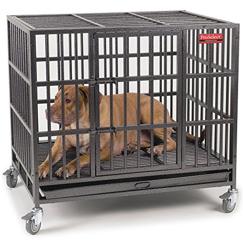 Pro Select Steel Empire Dog Cage