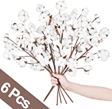 Best decorative floral balls Reviews