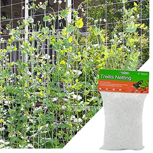 Rich-home Gartennetz Polyester Gartennetz Gitter für Kletterpflanzen Erbsennetz für Erbsen-, Gurken-, Bohnen- und Weinpflanzen