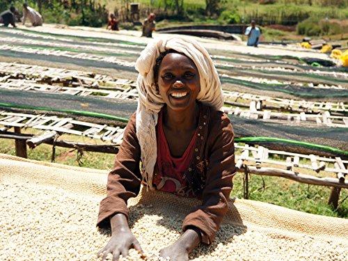 Ethiopian Yirgacheffe Washed...