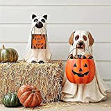 Ghost Dog Candy Bowl Holder,Halloween Pumpkin Snack Bowl Stand,Outdoor Life-Size Ghost Dog Candy Bowl,Halloween Candy Bowl Holder,Trick or Treat Wizard Ghost Dog Buckets (Dog+Cat)