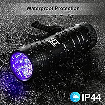 UV Torch, TechRise 12-Led LED UV Flashlight Pets Blacklight Dogs/Cats Urine Detector, Ultraviolet Flashlight Find Dry Stains on Clothes, Carpets or Floor 6