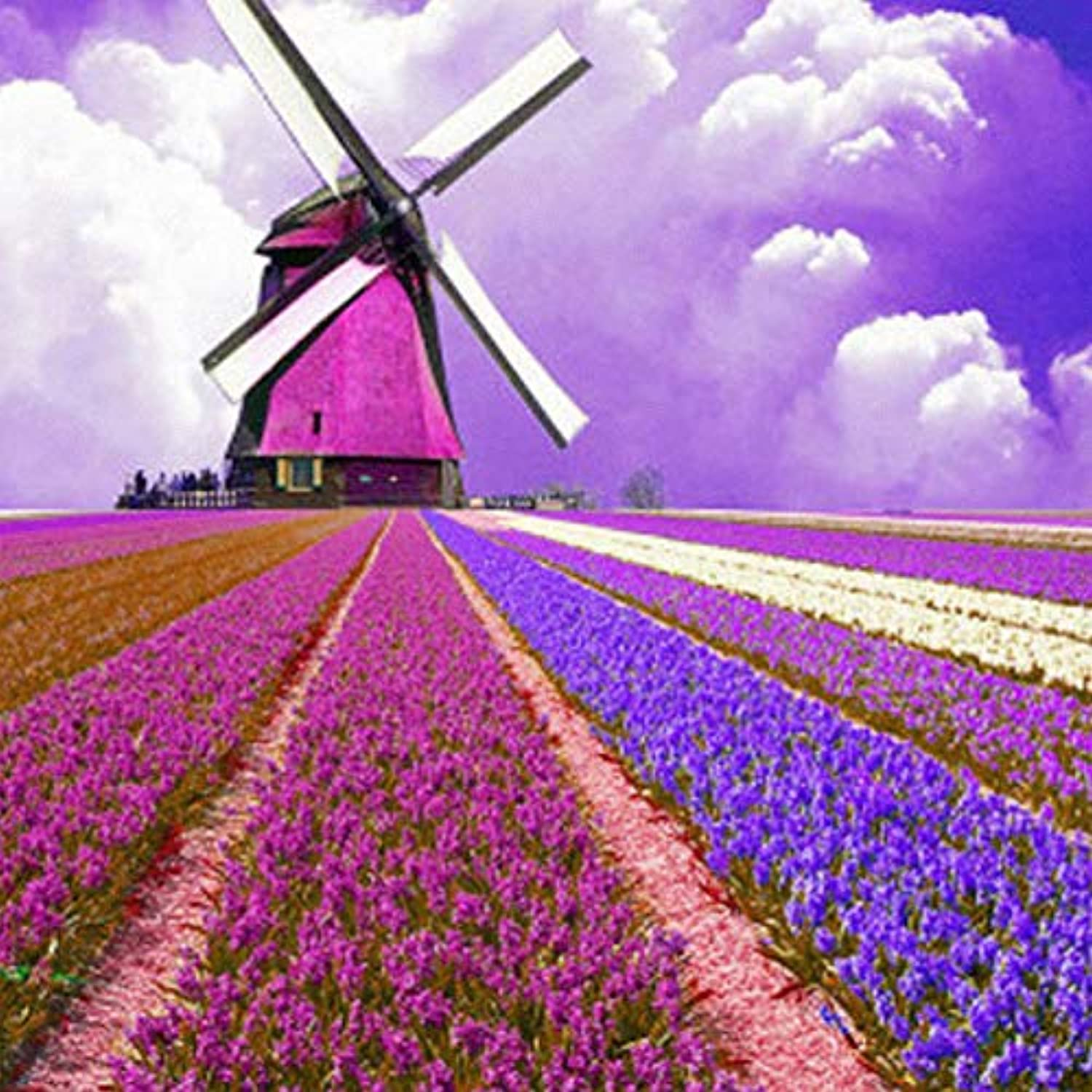 Paint By Digital Kit For Kids And Adults With Frame, Diy Oil Painting -colord Lavender Flowers Windmill, Gift 16''X20'' Inch