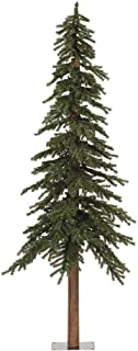 Best natural green christmas trees Reviews
