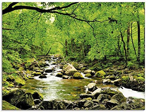 Artland Glasbilder Wandbild Glas Bild einteilig 80x60 cm Querformat Natur Landschaft Wald Fluss Wasserfall Felsen Steine Bach T1YH