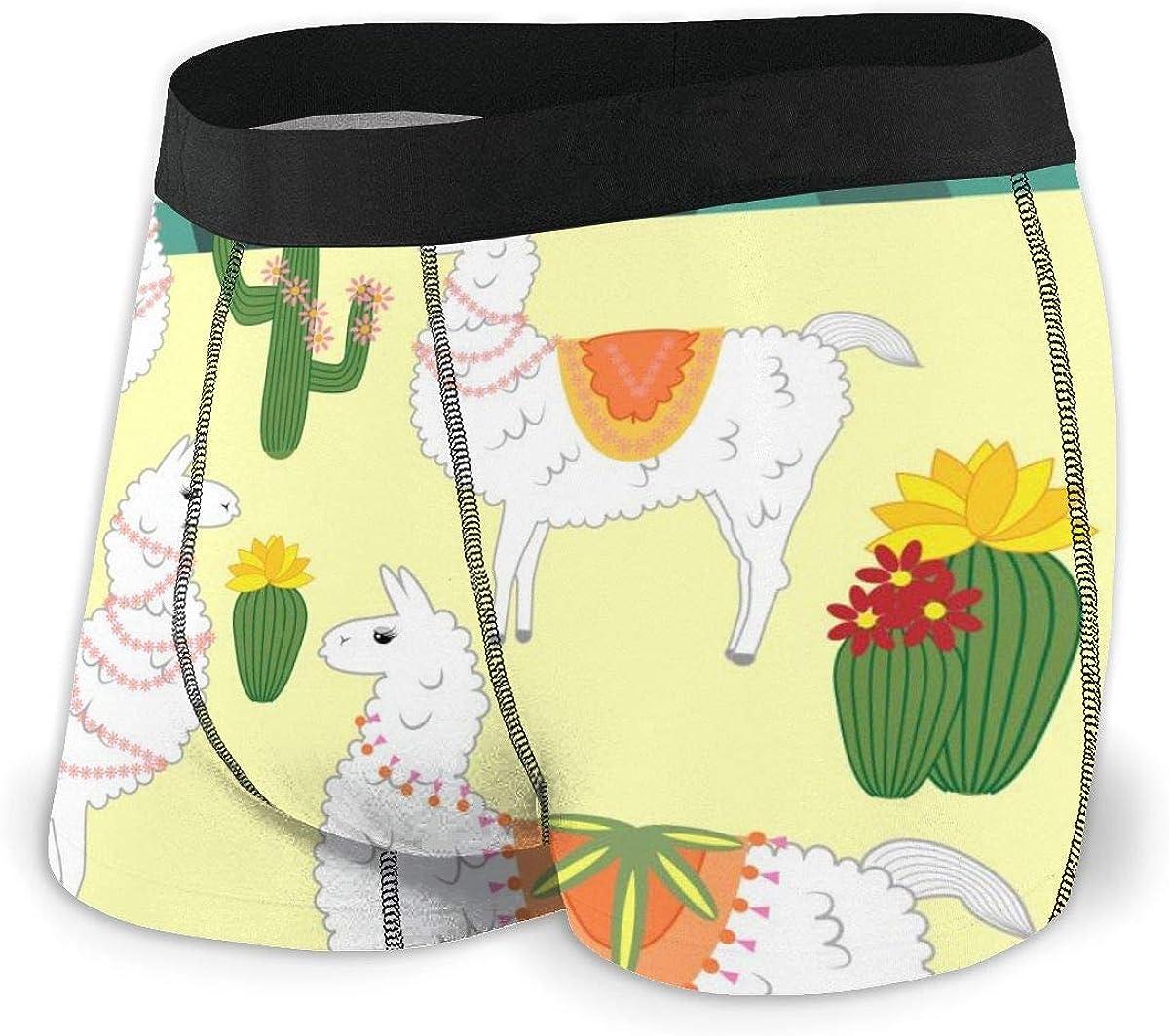 Randolph Wordsworth Mens Boxer Briefs Cute Alpaca of White Color, Low Rise Trunks Breathable Bikini Underpants Boys Underwear