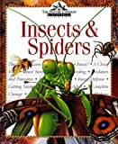 Insects & Spiders (Nature Company Discoveries Libraries)