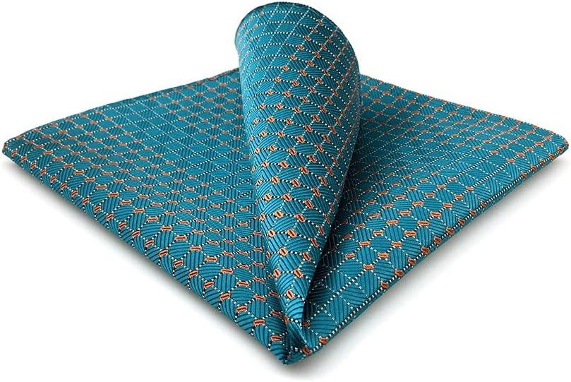 DIAOD Mens Pocket Square Wedding Silk Handkerchief Party Hanky Classic Fashion (Color : C, Size : 32x32CM)