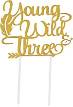 Topfun Double Sided Gold Glitter Young Wild & Three Cake Topper for Wild Three Boho Tribal Themed 3rd Birthday Party Supplies