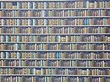 Melody Jane Puppenhaus Bibliothek Bücherregal Tapete Traditioneller Stil Bücher