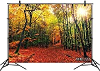 HD 10x7ft Autumn Forest Landscape Photography Backdrop Fall Maple Leaf Scenery Sunshine Nature Background Decorations Customized Photo Booth Props