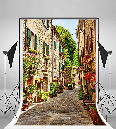 8x12 FT Travel Vinyl Photography Backdrop,Old Narrow Street European Town in Vittoriosa Malta Historical Architecture Country Background for Party Home Decor Outdoorsy Theme Shoot Props